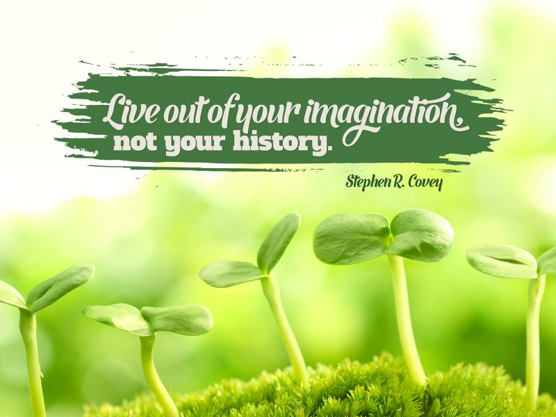 Live Out Of Your Imagination