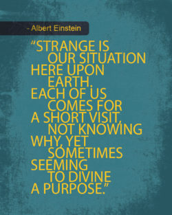 Knowing Why: Divine A Purpose by Albert Einstein