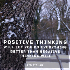Positive Thinking by Zig Ziglar