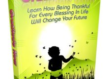 Gratitude Now Ebook