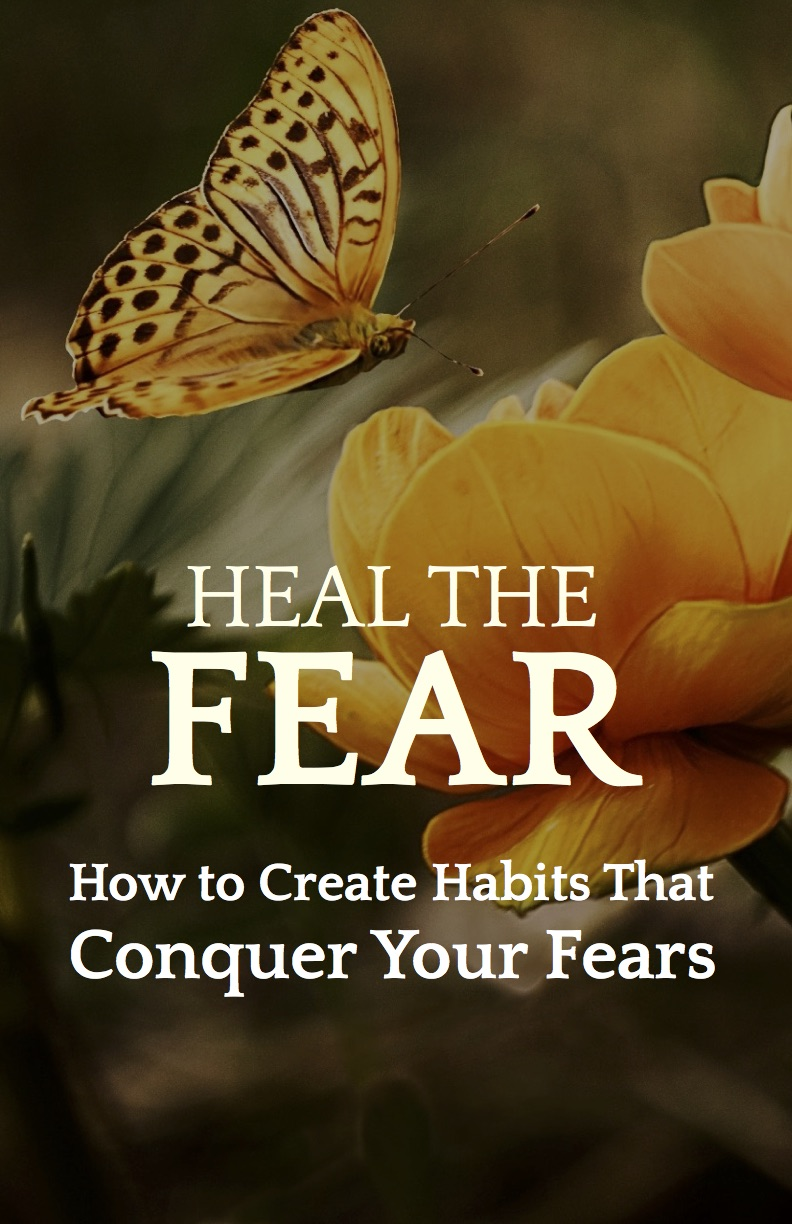 Heal the Fear - How to Create Habits That Defeat Your Fears