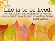 Life Is To Be Lived by Ralph Allison Inspirational Quote Poster