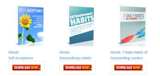 Extraordinary Habits Ebook [Personal Development Blog Ebooks]