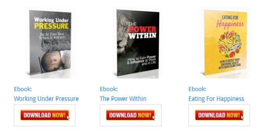 THE POWER WITHIN Ebook [Personal Development Blog Ebooks]