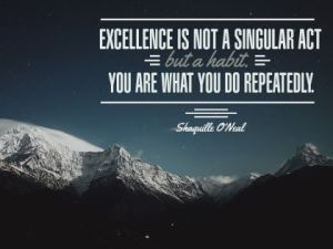 Excellence Is A Habit Inspirational Quote by Shaquille O'Neal