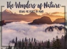Wonders Of Nature Inspirational Quote by Positive Affirmations
