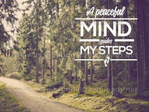 Peaceful Mind Inspirational Quote by Inspiring Thoughts