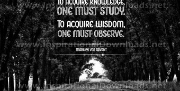 Acquire Wisdom Inspirational Quote by Marilyn Vos Savant Inspirational Poster
