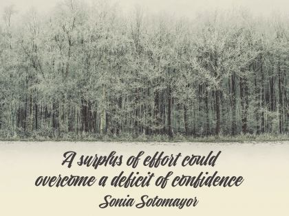 Deficit of Confidence Inspirational Quote by Sonya Sotomayor Inspirational Poster