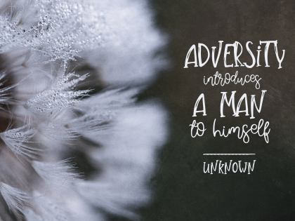 Adversity by an Unknown Author Inspirational Picture