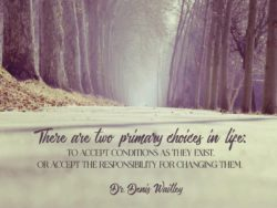Primary Choices In Life by Denis Waitley