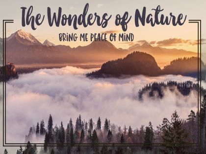 Wonders of Nature Inspirational Graphic Quote Poster