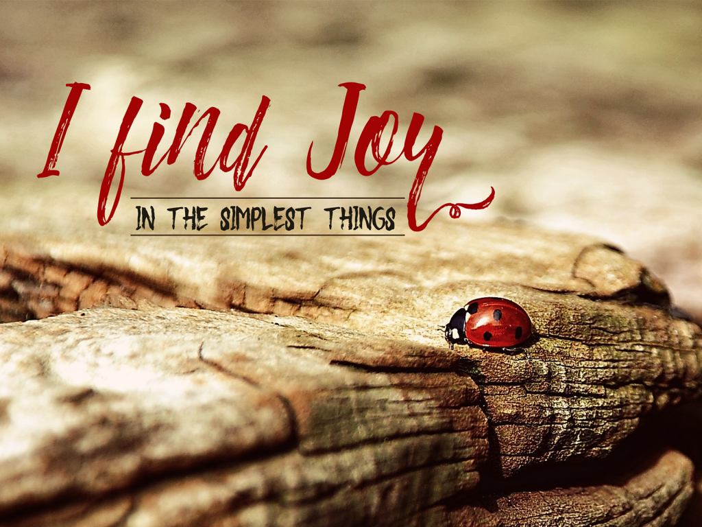 Find Joy Inspirational Thought Graphic