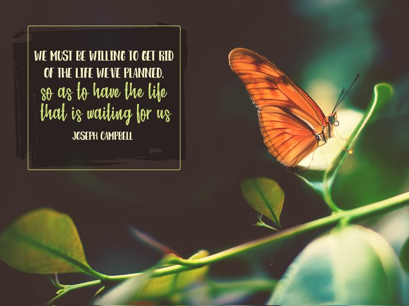 Life We've Planned by Joseph Campbell 2454-Campbell