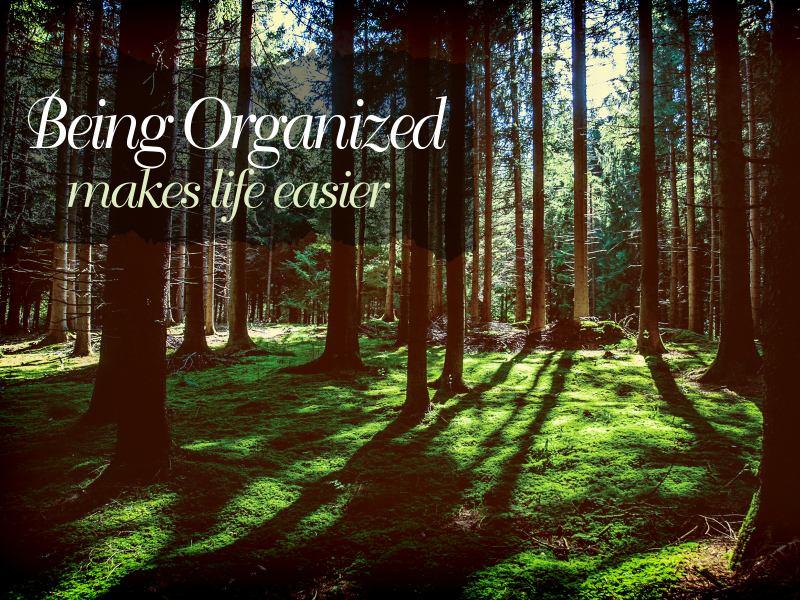 Being Organized 1341-Organized
