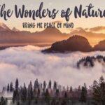 The Wonders of Nature Printable Wall Art